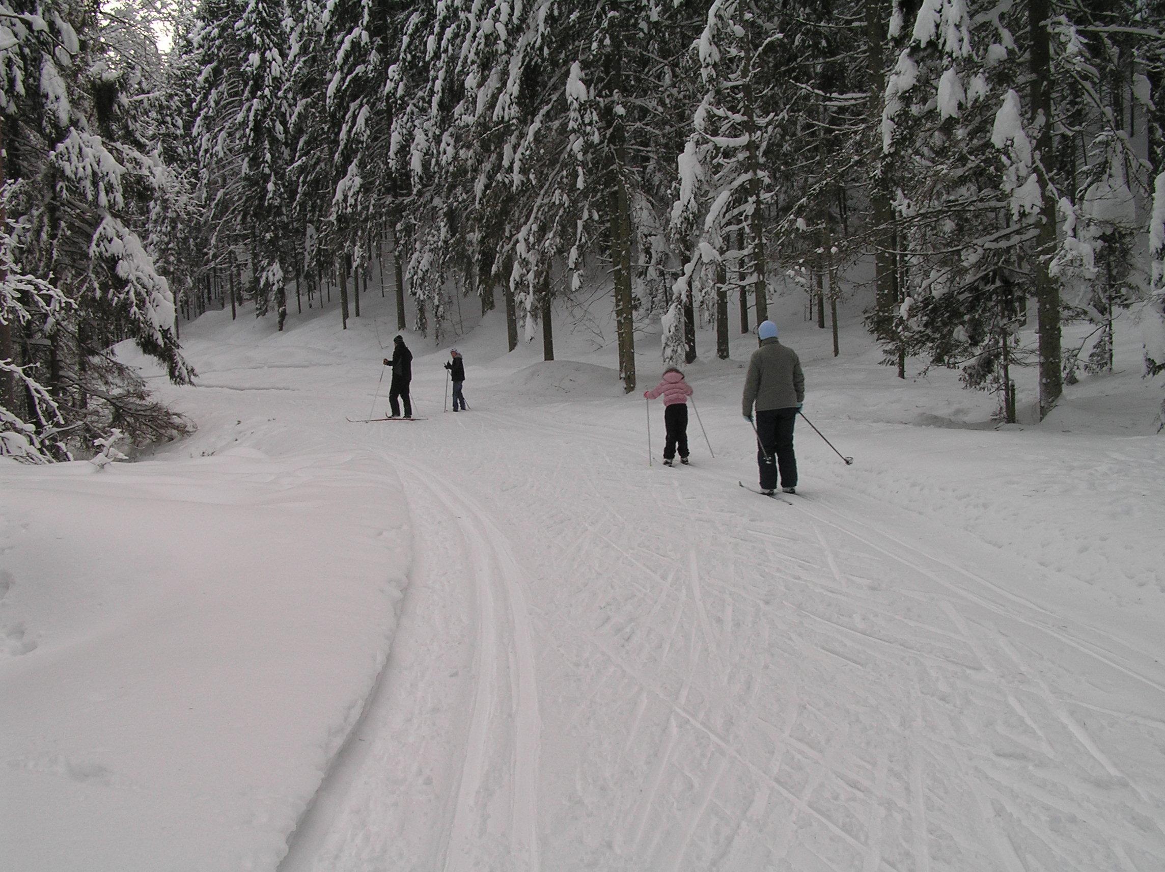 Distanču slēpošana Ogres Zilajos kalnos