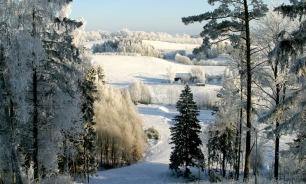 Latvian nature in winter