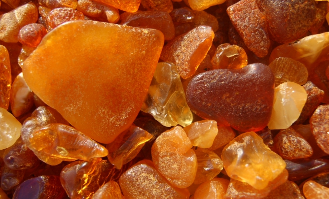 Unpolished pieces of amber from Baltic Sea