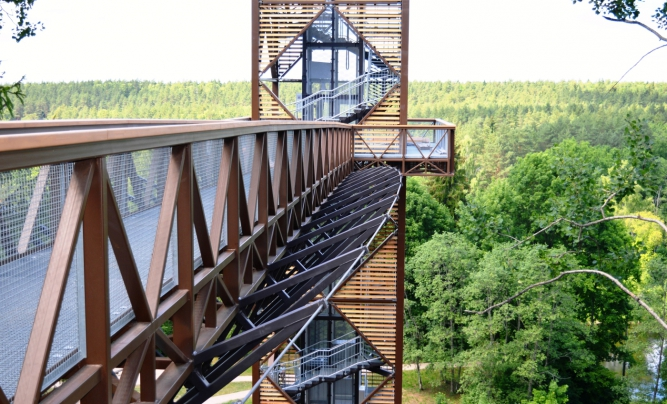 The treetop walking path