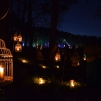 Magical Night of Senses in Valmiera
